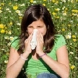 Natural Hay Fever Treatment
