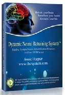 Dynamic Neural Retraining System (DNRS)