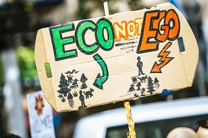 Eco Not Ego Placard