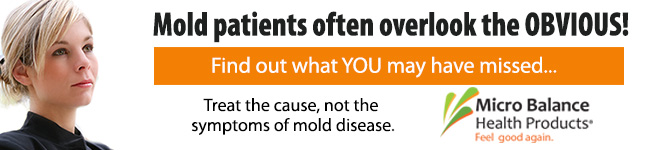 Treat the cause of mold