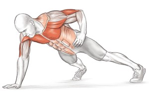 One arm push-up showing musculature