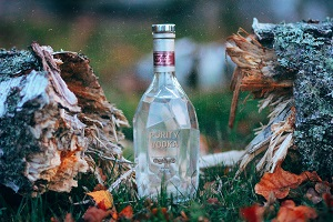 Bottle of vodka between a broken tree trunk